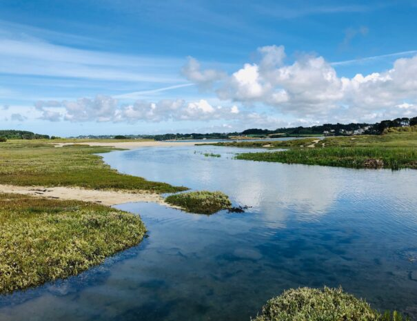 Lagune ile longue